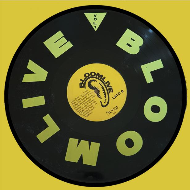 Disco Bloom Live vol. 1. 1991/1992. Dieci brani in un vinile in edizione limitata, registrati al Bloom tra settembre 1991 e marzo 1992, delle band: Go Insane, Violenti Lune Elettriche, Starfuckers, Mother of Loose, Duschkabinen, L.A. Choix, Magnifica Scarlatti, Snowdrops, Extip, Carnival of Fools. 1992.